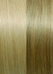 Exclusive Line #140  Beige Blond