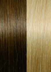 Exclusive Line #12/DB3 Golden Blond With Dark Blond Stripes